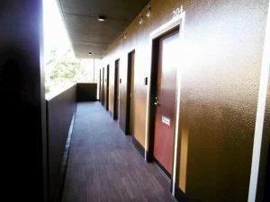 プリオールZEN弐番館の共用廊下